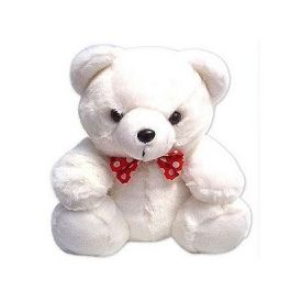 Teddy Bear in 12 Inch