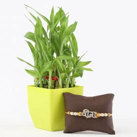 Rakhi With Lucky Bamboo
