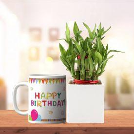 Bamboo With Mug