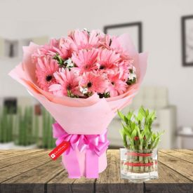 Pink Gerbera & 2 layer bamboo with vase