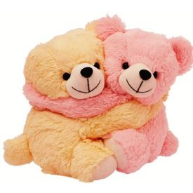 Couple teddy bear for Friend