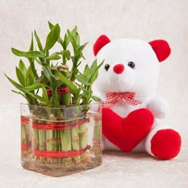 Bamboo with soft toy