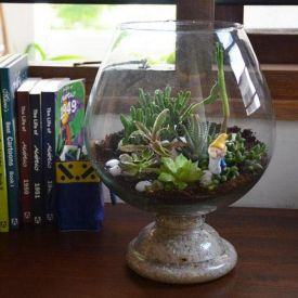 Cheers For Green Terrarium