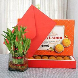 Moti Choor Laddoo With Bamboo