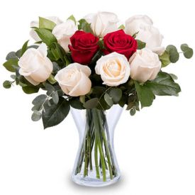 White and red roses in vase