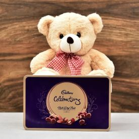 Teddy Bear & Cadbury Celebration Pack