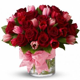 Pink and red roses with vase
