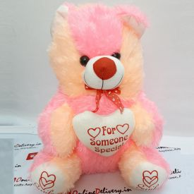 Cute Teddy bear with white little heart