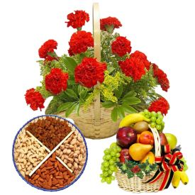 1/2 kg Dry fruits 15 flowers(mixed carnation) basket with fresh fruits 3 kg