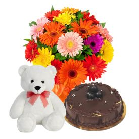 A bunch of mixed 20 gerberas, 1/2 kg chocolate cake and (6-inch-lovely teddy bear)