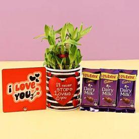 Lucky Bamboo & Chocolates Combo