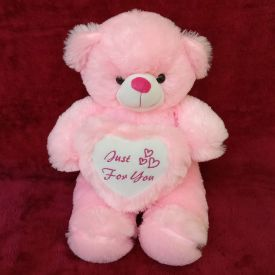 20 Inch Pink teddy bear