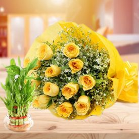 Yellow Roses with Bamboo Plant