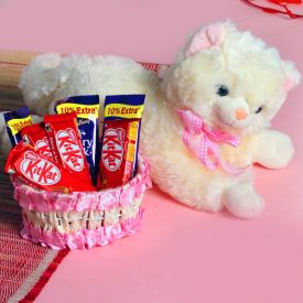Soft Toy With Chocolates
