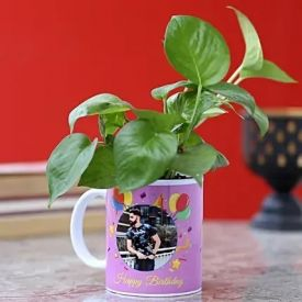 Money Plant in Personalized Mug