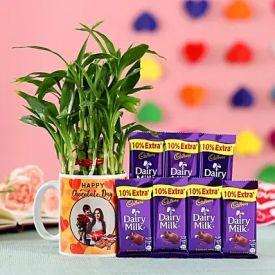 Bamboo Plant & Dairy Milk Chocolate