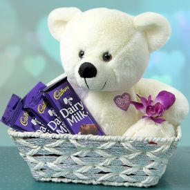 Teddy and chocolate combo