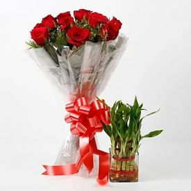 Lucky Bamboo With Red Roses Bouquet