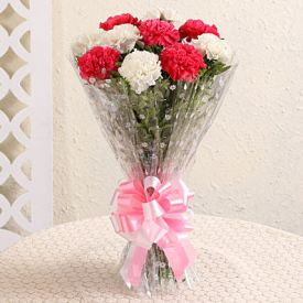White N Pink carnation