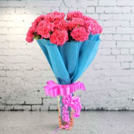 Graceful Pink Carnation