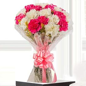 Pink and white Carnations Bunch