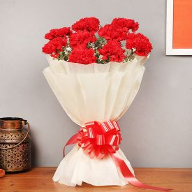Glorious Red Carnations Bouquet