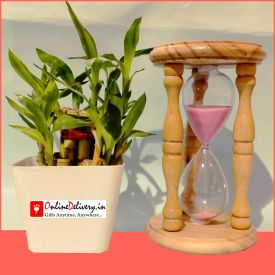 Hourglass Timer With Bamboo Plant