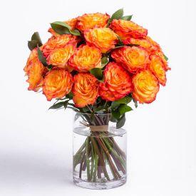 Bunch of 36 orange roses