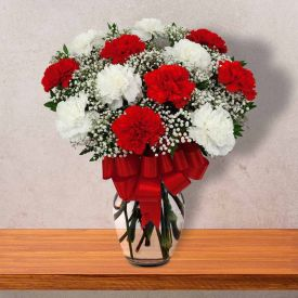 Calm Carnations