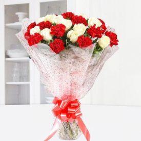 Marvelous Carnations
