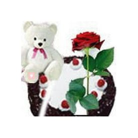 Teddy Bear (6 inches) with 1 Rose and 1/2 kg black forest  Cake