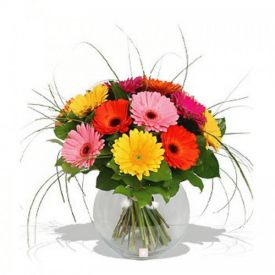Mixed Gerbera in Vase