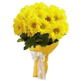 Bunch of 10 Yellow Gerbera