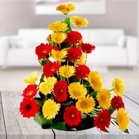 Mixed gerbera with Basket