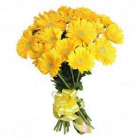 20 Yellow Gerbera