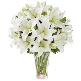 Bunch of 10 white lilies with Vase