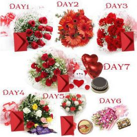 Valentines Day - 7 Day Special Gifts
