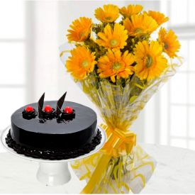 Yellow Gerbera With Truffle Cake