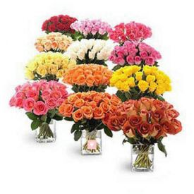 10 different colour of bunches of 10 roses