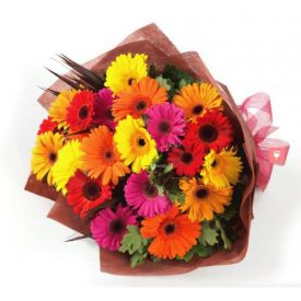 Mixed Gerberas Arrangements