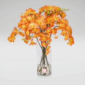 15 orange orchids in vase