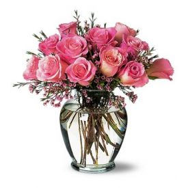 12 Pink roses with vase