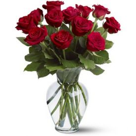 Bunch of 12 beautiful red roses.