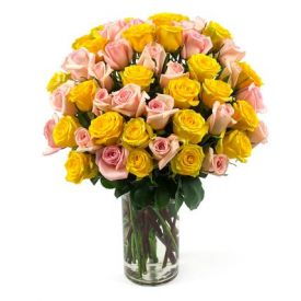 50 Light Pink Rose ,Yellow Rose with in vase
