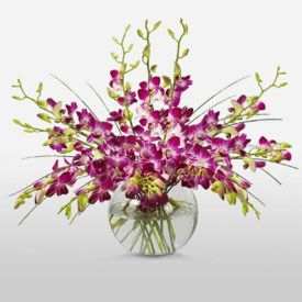 Purple Orchids in Vase