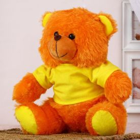 Cute Teddy : Personalized Soft Toys