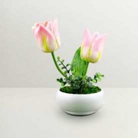 Simply Chic Pink Tulip With Ceramic Pot