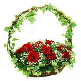 Red Roses with basket