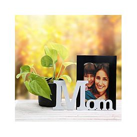 Precious Mom Frame And Plant