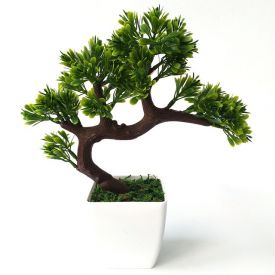 Bonsai Tree in a Vase